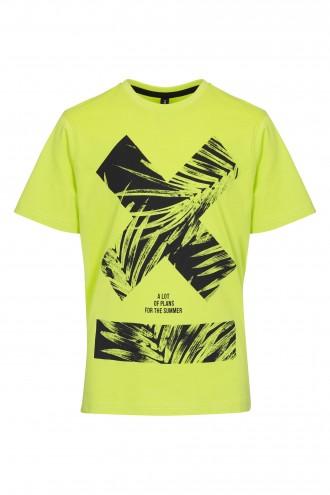 T-shirt chłopięcy  z nadrukiem Lemon X-Palm