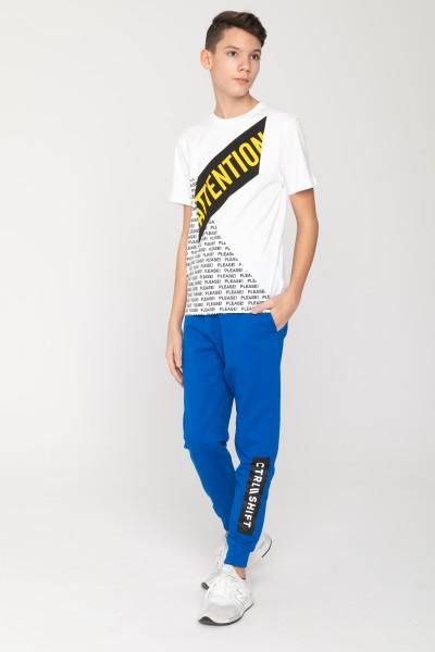Niebieskie spodnie desowe CTRL SHIFT