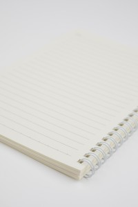Notes w linię FLAMING